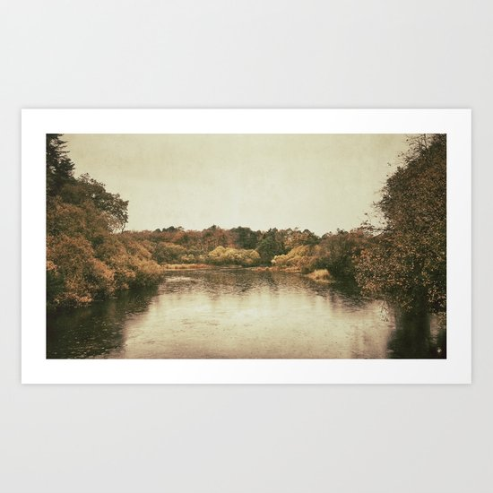 Lake in Ireland Art Print