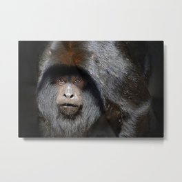 Black Howler Monkey Metal Print