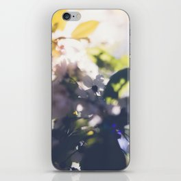 Contre-Jour Blooming Blossom iPhone Skin