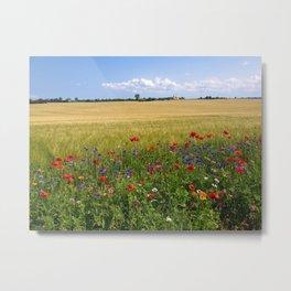Purple, Red, and Orange Prairie Wildflowers of Spring Metal Print