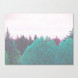 Dreamland Forest Canvas Print