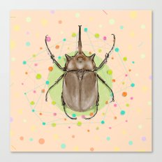 Insect I Canvas Print