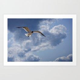 Solo Flight Art Print