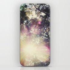 Sun/Sunflare iPhone & iPod Skin