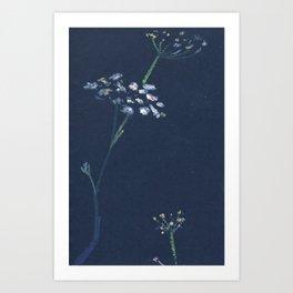 umbrella flower Art Print