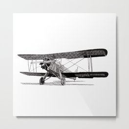 Curtiss Fledgling Junior Metal Print