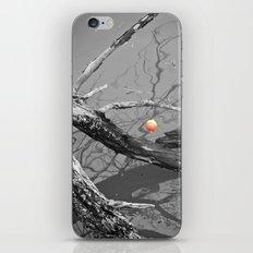 Left Hanging iPhone & iPod Skin