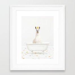 llama with Rubber Ducky in Vintage Bathtub Framed Art Print