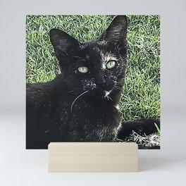 Island Cat Relaxing in Tropical Grass Mini Art Print
