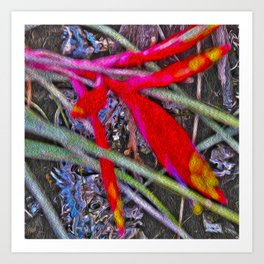 Bromeliad in the Cathedral Art Print
