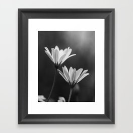 In My Season (Black and White) Framed Art Print