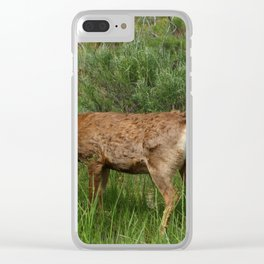 Breakfast At Mesa Verde Clear iPhone Case