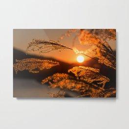 Feels Warm With The Sun Metal Print
