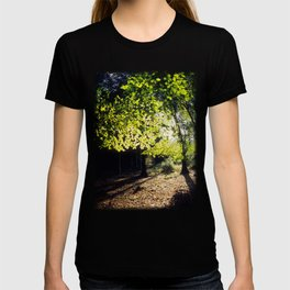 The Woods in Spring T-shirt