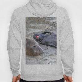 Elephant Seal Mother and Baby Hoody