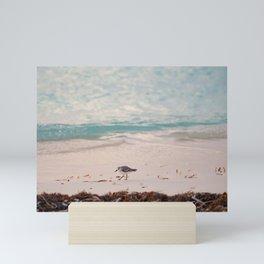 Little bird on the beach in Cayo Levisa   Travel photography Cuba Mini Art Print