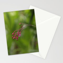 Naturaleza Stationery Cards