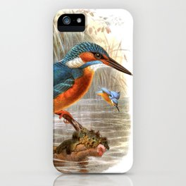 Vintage print,colorful poster of Kingfisher iPhone Case