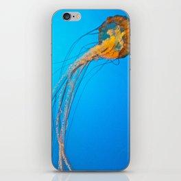 Animality: Jellyfish, Solo. iPhone Skin