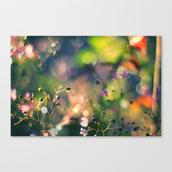 The Rainbow Forest I Canvas Print