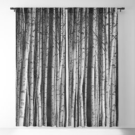 Birch || Blackout Curtain