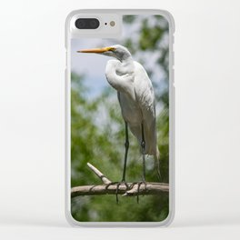 Great Egret - Utah Clear iPhone Case