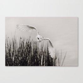 """""""Night Owl"""" Canvas Print"""