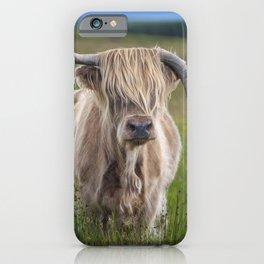 Highland Cow III iPhone Case
