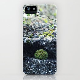 Forest finds iPhone Case