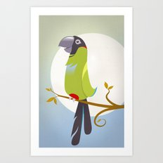 Nanday Conure Art Print