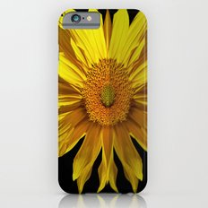 sunflower in the mirror iPhone 6s Slim Case