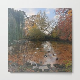 Pond Forest Photo Metal Print