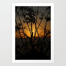 Sunrise 2 Art Print