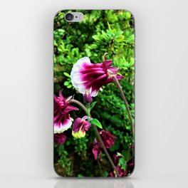 Petticoat Junction Floral iPhone Skin