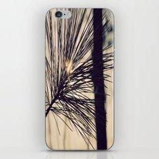 Peaking Through iPhone & iPod Skin