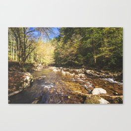 Relax and Listen Canvas Print