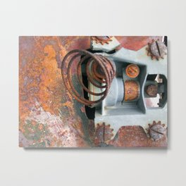 Love of Rust Metal Print