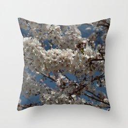 Yoshino Cherry - Prunus yedoensis Throw Pillow