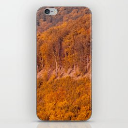 Autumn or fall forest view in the mountains, deciduous forest landscape iPhone Skin