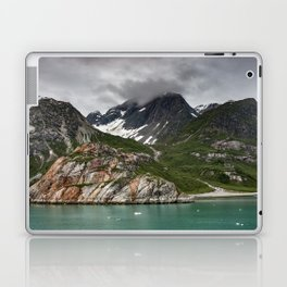 Barren Wilderness Laptop & iPad Skin