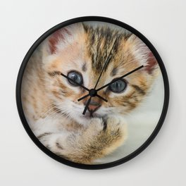 Smirking kitten Wall Clock