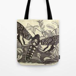 Death's-head Moth Tote Bag