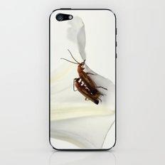 Sex in nature iPhone & iPod Skin