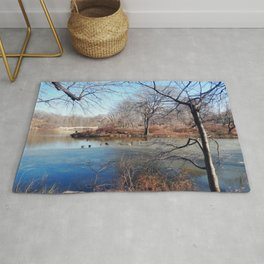 Winter in Central Park, NYC Rug