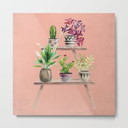 Watercolor Plant Ledge on Pink Metal Print