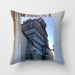 Drier Throw Pillow