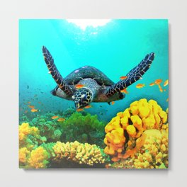 Turtle in Water Metal Print