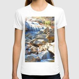 Lower Falls T-shirt