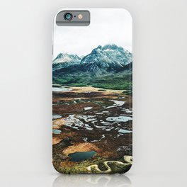 patagonia iPhone Case