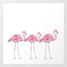 Flamingo - pink bird - animal on white background Art Print